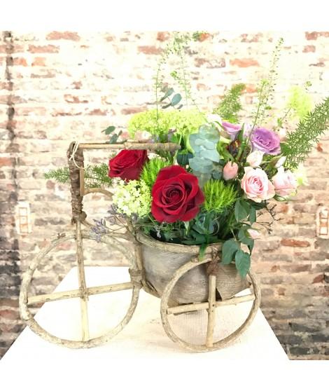 Bike & Roses